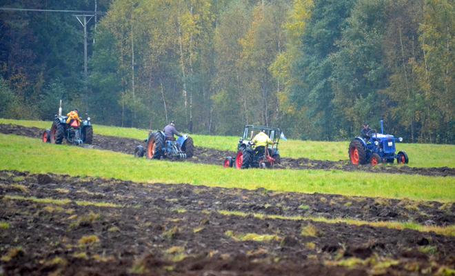 Fyra traktorer vid veteranplöjningen