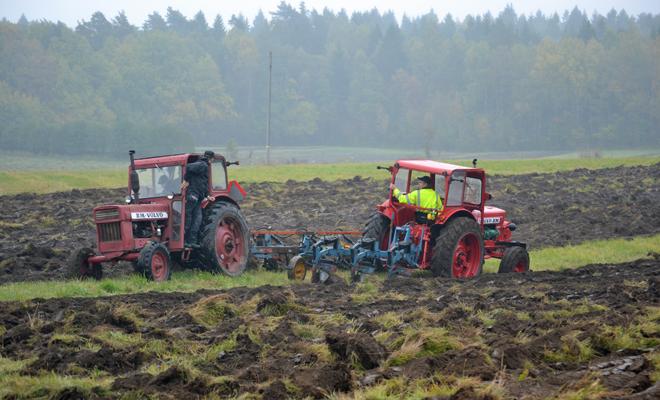 Två traktorer vid veteranplöjningen