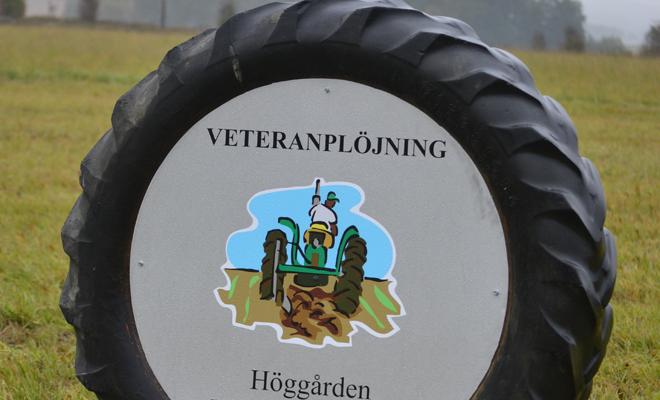 Veteranplöjning i Hjällsnäs