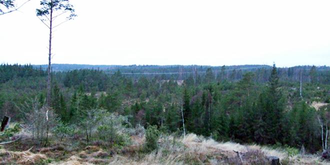 Vindpark Fyrskog