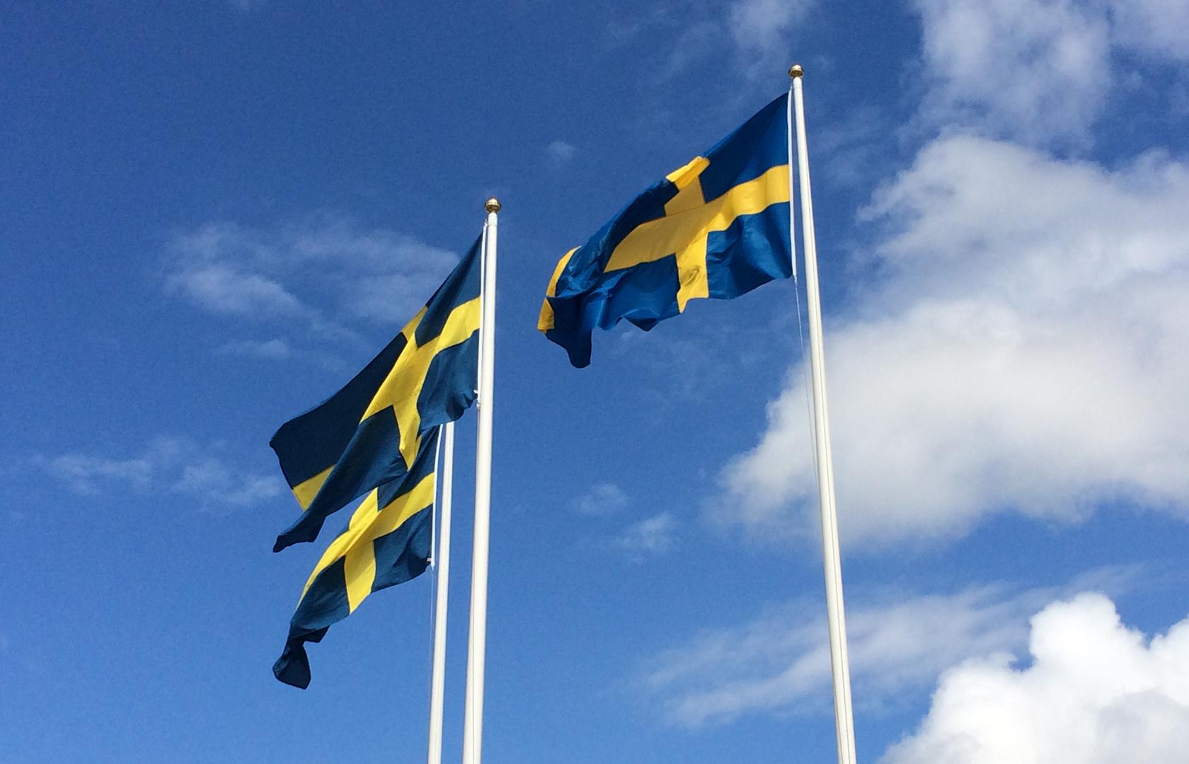 Svenska Flaggor, Nationaldagen 2014 - foto MikaelTilly