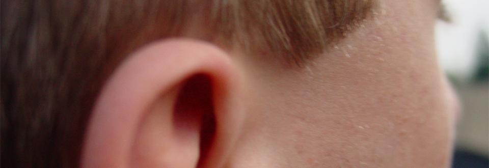 """""""Jag kunde inte tro mina öron"""" av Emma Ahlgren"""